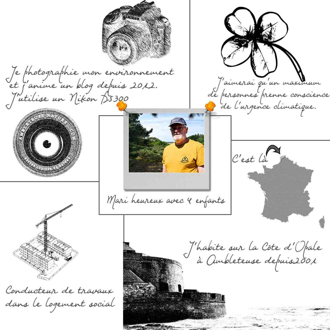 fiche_presentation_a_propos
