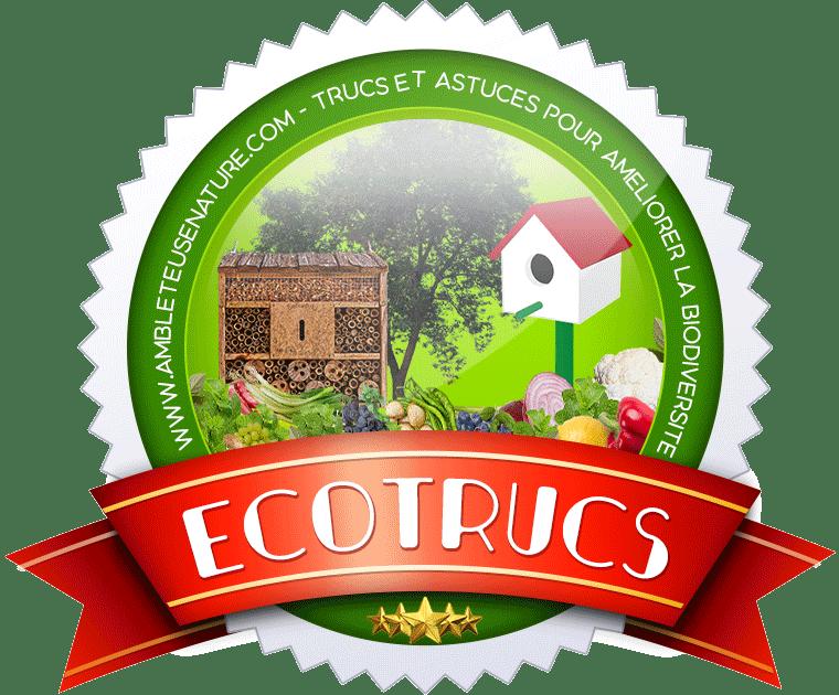 LOGO ECOTRUCS